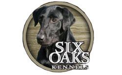 Six Oaks Kennels